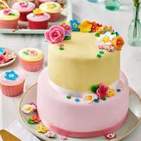 FunCakes Mix voor Royal Icing -450gr-