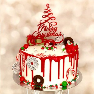 Workshop Kerst Drip Cake -15-12-2018-